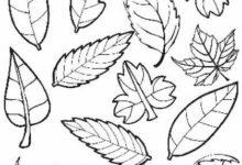 Photo of Как нарисовать осень